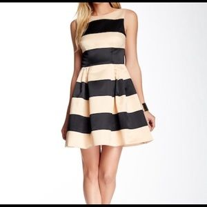 CeCe Cynthia Steffe Fit and Flare Striped Dress 4